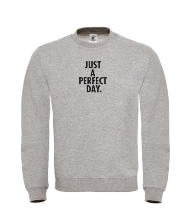 Sweater - Just a perfect day - sobad